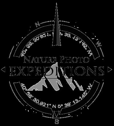 Logo_v3_b