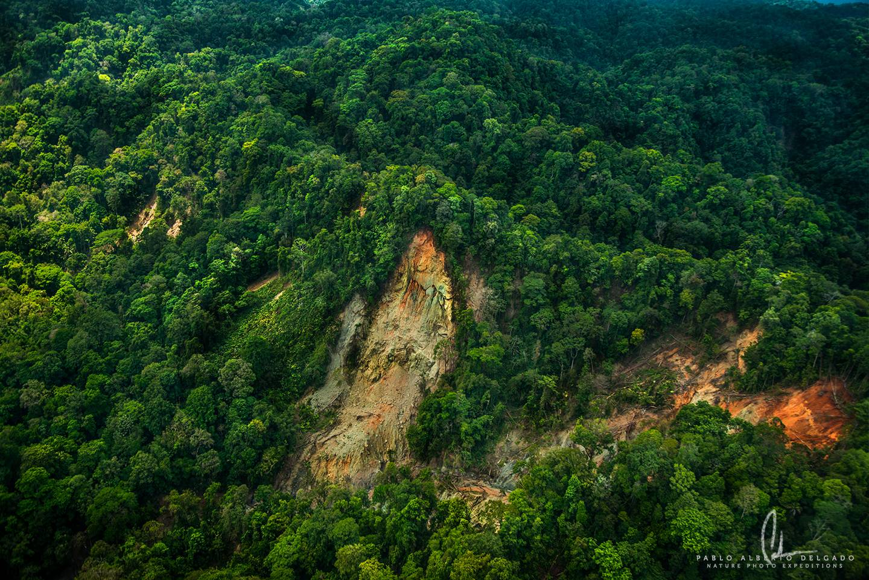 Fotografía aérea bosque Costa Rica